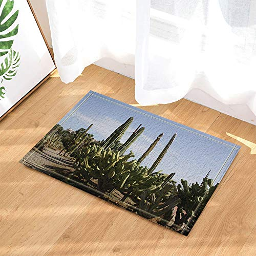 (cdhbh Saguaro Kaktus im Desert Feigenkaktus Southwest Texas National Park Bad Teppiche rutschhemmend Fußmatte Boden Eingänge Innen vorne Fußmatte Kinder Badematte 39,9x 59,9cm Badezimmer Zubehör)