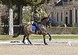LeMieux Prosport Coton carré de Dressage Saddlepad L Benetton Blue