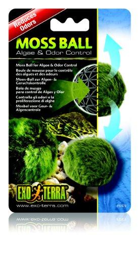 Exo Terra PT2478Moss Ball