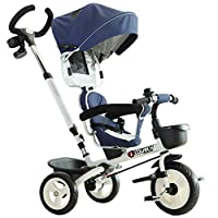 HOMCOM 4-in-1 Baby Tricycle Folding Stroller Kids Trike Detachable Canopy Pushing Handle Learning Bike Two Colours
