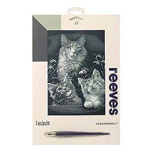 Reeves - Creatividad - Tarjeta de Raspar - Medio, plata - Gatitos 2