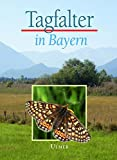 Tagfalter in Bayern - Markus Bräu