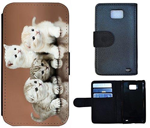 Flip Cover Schutz Hülle Handy Tasche Etui Case für (Apple iPhone 5 / 5s, 1281 Pferd Hengst Weiß Blau) 1282 Baby Katzen Katze Kätzchen Weiß Grau