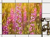 creatisto Dekofolie Fliesen dekorieren   Dekor-Fliesensticker Badezimmerfliesen Badgestaltung   25x20 cm Design Motiv Flower Meadow - 9 Stück