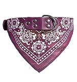 AK.SSI Hunde-Schal/Schal / Schal/Katzen-Schmuck/Hundehalsband, aus PU, Größe XXL, Violett