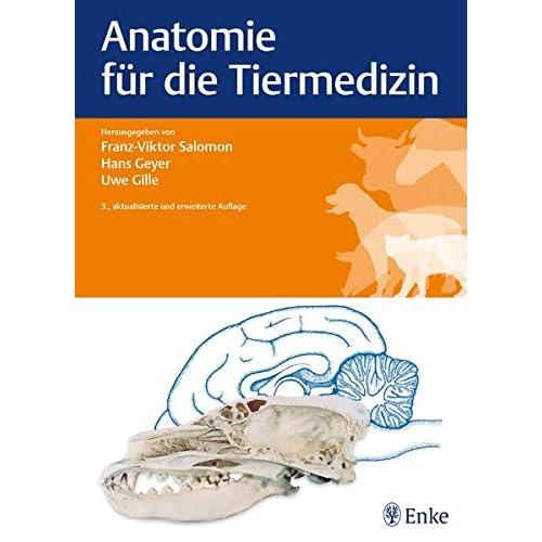 PDF] Anatomie für die Tiermedizin KOSTENLOS DOWNLOAD - Bücher Online ...