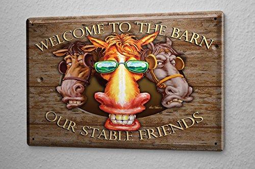 Blechschild Witzige Deko Schilder Kühe Scheune Freunde Sonnenbrille Fun Metallschild 20X30 cm