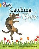 Catching Flies: Band 09/Gold (Collins Big Cat)