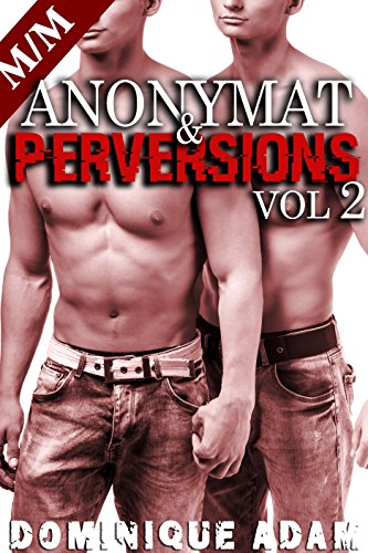Anonymat et Perversions Vol .2: (Roman Érotique M/M, Sexe à Plusieurs, Initiation Homo, Alpha Male, Domination Gay MM)
