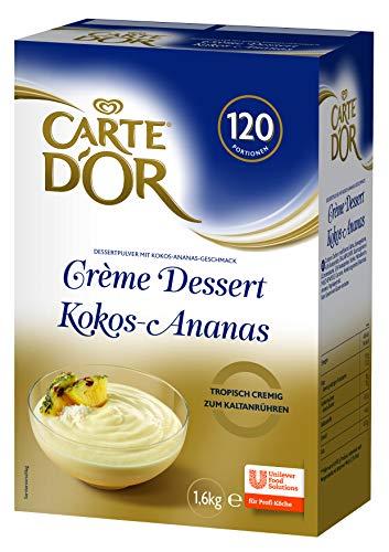 Kokos-süße Frucht (Carte D'Or Creme Dessert Kokos Ananas (Fruchtdessert Mischung) 1er Pack (1 x 1,6 kg))