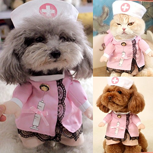 dairyshop Pet Dog Cat Krankenschwester Anzug Kostüm, Puppy Outfit Kleidung für Halloween Weihnachten Geschenk (Krankenschwestern Kostüme Accessoires)