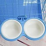 OMGO Gamelle Chat et Chien Double Gamelle avec Installation Fixe Suspendre à Cage Amovible Solide pour Chat Chiot Lapin S Bleu