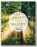 Die Kraft des Waldes: Mit Fotografien von Kilian Schönberger - Doris Iding