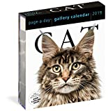 #2: 2019 Cat Gallery Page-A-Day Gallery Calendar