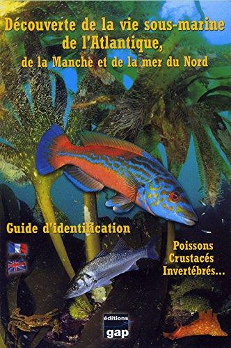 Découverte de la vie sous-marine de l'Atlantique, de la Manche et de la Mer du Nord : Guide d'identification par Nicolas Barraqué