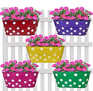 Artesia Metal Dotted Oval Shaped Railing Planters Flower pots for Garden Balcony Hanging Flower Pot Vertical Planter for Home Decor (Set of 5)