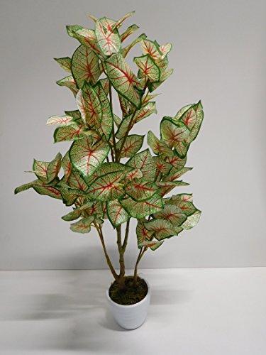 Caladium Grünpflanze Kunstpflanze Dekopflanze H 90 cm 12290-1 getopft F74