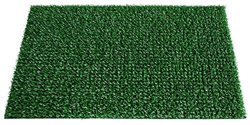 Felpudo alfombra de entrada exterior, 40 x 70 cm, color verde primaver