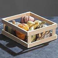 Zucca Halloween Pumpkin arte frutta tavolo decorazione raccolto grazie autunno, Set di 6, assortiti