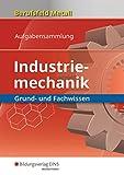 Berufsfeld Metall - Industriemechanik: Grund- und Fachwissen: Aufgabensammlung - Klaus Hengesbach