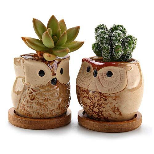 ComSaf 6.5CM Lechuza Maceta de cerámica vidriada Cactus suculento con bandejas de bambú marrón...
