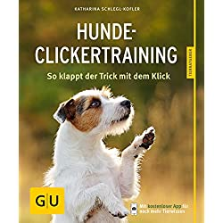 Hunde-Clickertraining: So klappt der Trick mit dem Click