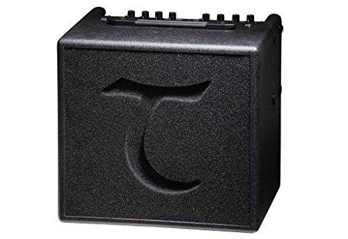 Tanglewood TA3 - Amplificador