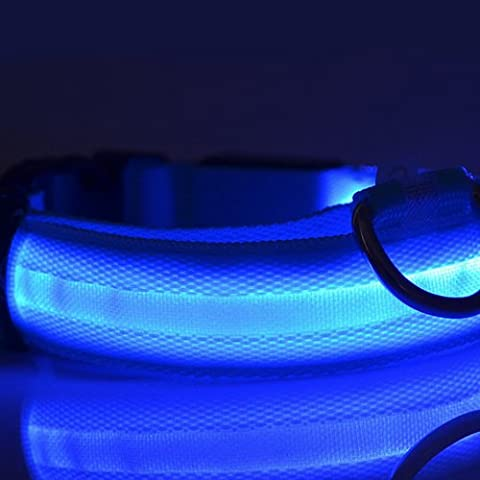 Perro de nylon azul LED nocturna de seguridad Collar intermitente correa del Light-up (Blue)