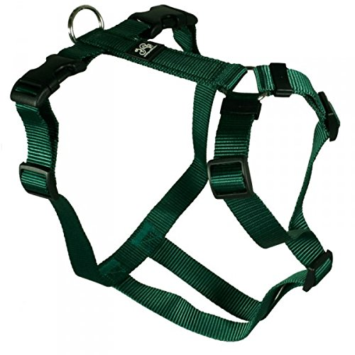 Hundegeschirr - Nylonband, Unifarben Grün, Bauchumfang 50-65 cm, 20 mm Bandbreite