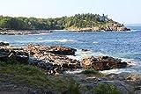 HCYEFG Puzzle da 1000 Pezzi Puzzle per Bambini Schooner Head, Parco Nazionale di Acadia Giocattoli Educativi per Bambini Puzzle per Adulti