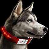 Rechargeable LED Dog Collar, JuzPetz Reflective Flashing Visible Collar [Water Resistant | 3 Glow Modes] Adjustable Light-Up Pet Safety Collar with USB Charging Cable - Medium [13.5-18.5' / 34-47 cm] Red