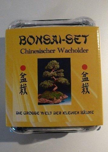 Galleria fotografica TROPICA – Bonsai -Set crescente –Ginepro cinese con semi, ciotola di ceramica, brochure e serra