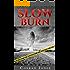 Slow Burn (Detective Alec Ramsay Series Book 2)