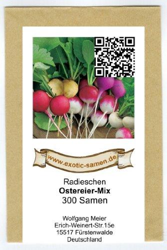 Radies - Radieschen - Ostereier-Mix (300 Samen)