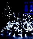 Premier  LV102637WP Decorations Supabrights - 100 luces led