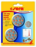 Sera 31186 LED Chip Orange Sunset 2 W Reines orangefarbenes