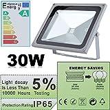 30W LED RGBW Flutlicht, 16 Farben und 4 Modi Effekte Video, Farben Strahler Fluter Außen mit Fernbedienung AC 230V