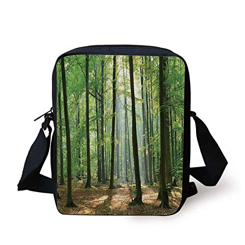Forest,Morning Sun Beams in Natural Spring Forest from The Sky in a Sunny Day,Green and Light Brown Print Kids Crossbody Messenger Bag Purse Sunny Beam