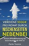 Verdiene 1000€ pro Monat durch Nischenseiten nebenbei