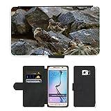 Grand Phone Cases PU Flip Carcasa Funda de Cuero Piel Cubre Case // M00140594 Uccelli trampolieri acquatici resto di // Samsung Galaxy S6 (Not Fits S6 EDGE)