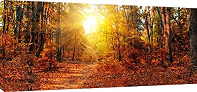 MOOL 42 x 20-inch Large Sunny Autumn Forest Canvas Wall Art Print Hand Stretched on a Wooden Frame with Giclee Waterproof Varnish Finish Ready to Hang