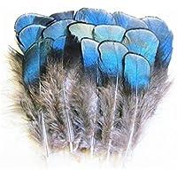 ERGEOB® 100 pezzi di rame blu mestieri