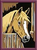 Ravensburger 29582 - Pferd im Stall - Malen nach Zahlen, 8.5 x 12 cm