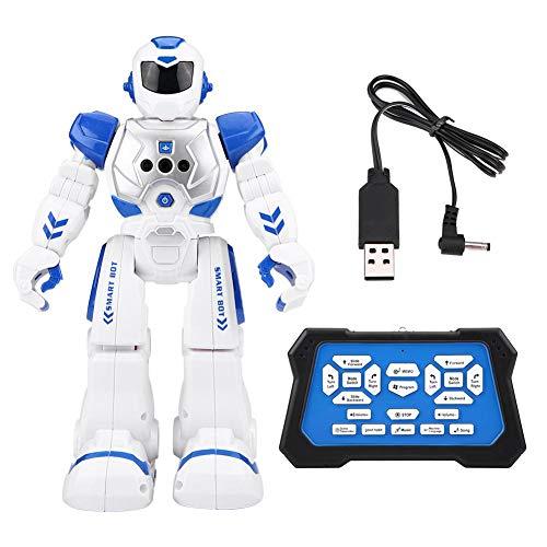 Dilwe RC Roboter Spielzeug, Programmierbare Geste Induktion Infrarot Fernbedienung Roboter mit Licht Musik Sound Pädagogisches Spielzeug Geschenk für Kinder