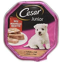Cesar - Nourriture pour Chien - Junior - pour Chiots et Jeunes Chiens < 1 Ans - avec Dinde et calb dans la pâte - 14 Bols (14 x 150 g) - 2100 g