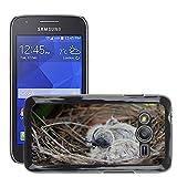 hello-mobile Carcasa Funda de cuero funda case//M00136502Bird Nest bambino nido d' uccello uccello//Samsung Galaxy ACE4/Galaxy Ace 4LTE/sm-g313F