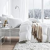 XOCKYE Kinder bettdecken Set Bettdecke 4 Jahreszeiten, Oeko-Test Zertifiziert Winterdecke, Super Weiche Kuschelige Steppdecke Schlafdecke-200x230cm