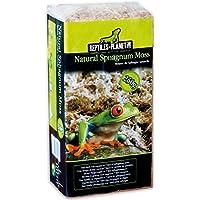 REPTILES PLANET Substrat pour Reptiles Natural Sphagnum Moss 250 g