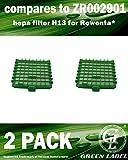 Lot de 2 filtres HEPA H13 pour les aspirateurs Rowenta Silence Force et X-Trem Power (alternative à ZR002901). Produit authentique de Green Label