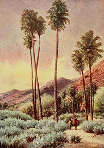 a4-photo-bagg-henry-h-1852-1928-on-sunset-highways-1921-palm-canyon-california-print-poster
